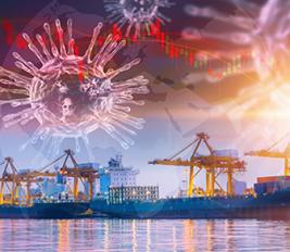Sea freight logistics COVID trends