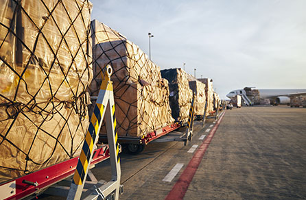 Cargo for air freight